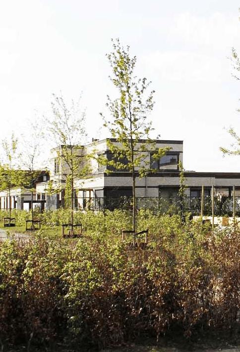 Wonen aan een seniorenhofje in het groen, gebouwd onder architectuur, een CPO project