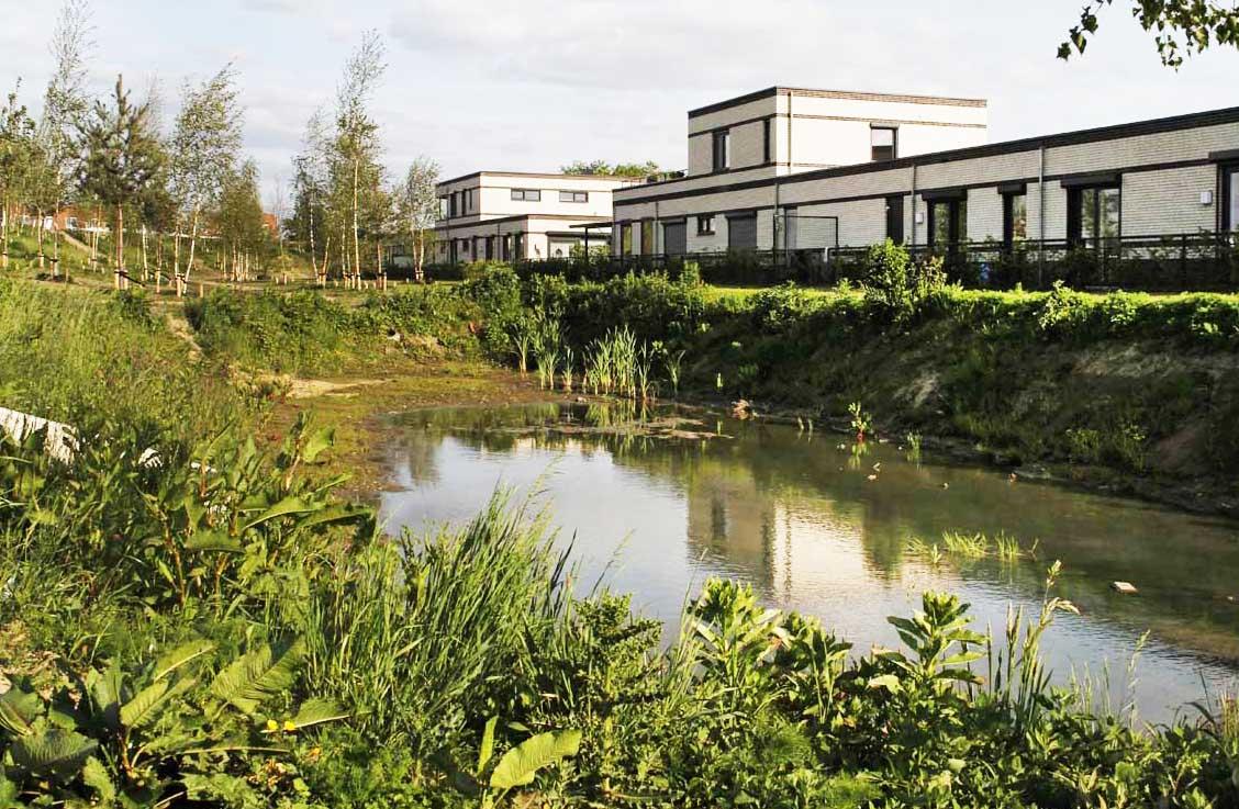 Veel groen bij het ontwerp CPO voor ouderen Eindhoven, een hofje in het groen
