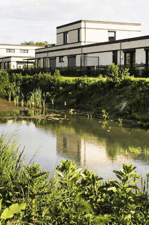 natuurinclusief veel groen in CPO project Eindhoven